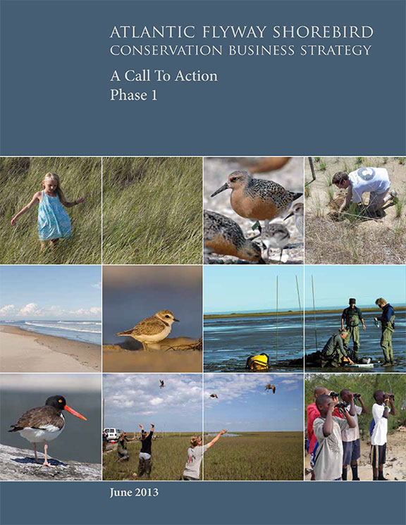tn-atlantic-flyway-shorebird-conservation-business-strategy