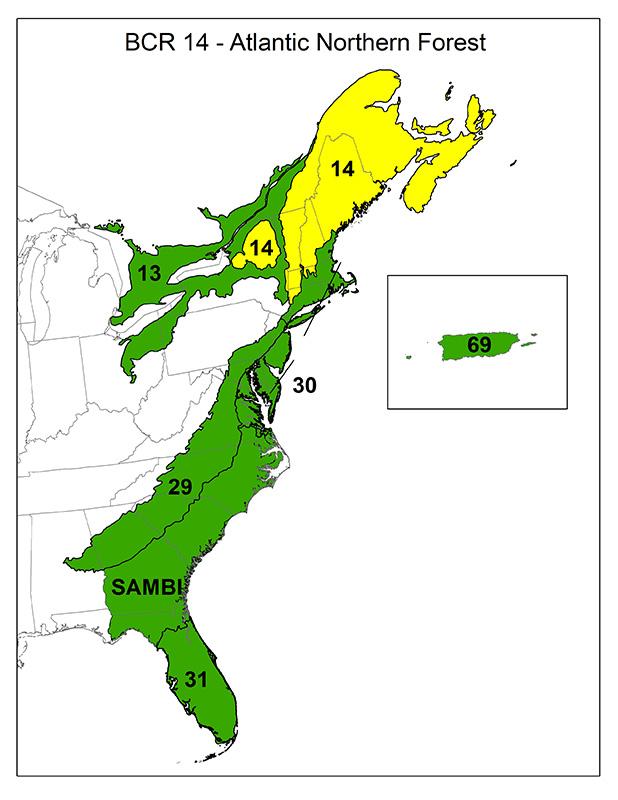 Bird Conservation Regions Atlantic Coast Joint Venture