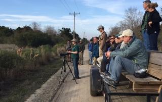 South Carolina Department of Natural Resources staff show ACJV Management Board excellent Black Rail habitat. Photo courtesy Tim Jones/USFWS