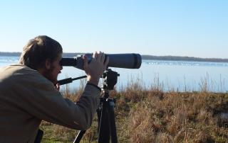 Monitoring waterbirds.