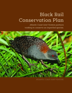 black rail plan cover